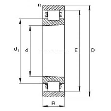 65 mm x 100 mm x 18 mm  FAG N1013-K-M1-SP cylindrical roller bearings