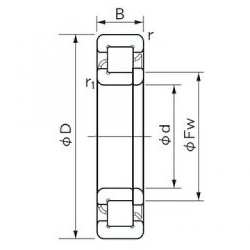 180 mm x 320 mm x 86 mm  NACHI NUP 2236 cylindrical roller bearings