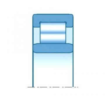 150,000 mm x 225,000 mm x 75,000 mm  NTN R3062V cylindrical roller bearings